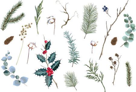 Set of decorative Christmas elements. Floral decor collection for decoration. Vector illustration.