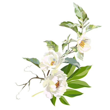 Blooming branch of white peonies and jasmine. Decorative element for creating a greeting card. Vector illustration. Vektorgrafik