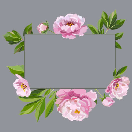 Decorative frame with beautiful pink peonies on a gray background. Vector illustration. Illustration