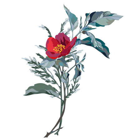 Decorative branch with red flower. Vector illustration Illustration