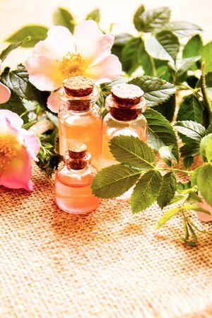 Rose essential oil rosehip Selective focus.nature Stock Photo