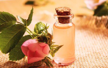 Rose essential oil rosehip Selective focus.nature
