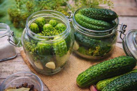 preservation of fresh house cucumbers. Selective focus. nature 版權商用圖片