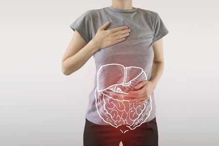 Compuesta digital de órganos internos rojos resaltados que padecen una enfermedad grave Foto de archivo