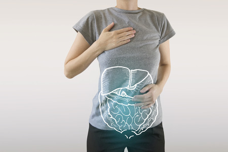 highlighted blue internal organs of healthy human organsim  protection from illnesses