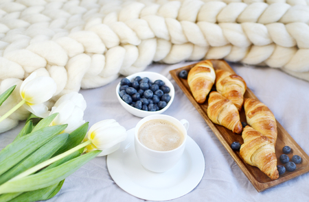 Cup with cappuccino and croissants, berries, white pastel giant knit blanket, bedroom, flowers tulips, spring, woman day, morning concept