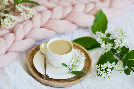 Cup with white coffee, milk, pink pastel giant blanket, bedroom, morning concept, bird cherry tree flowers, book reading