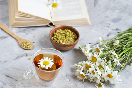 Cup of tea with chamomile flowers on gray background, book reading, free time concept