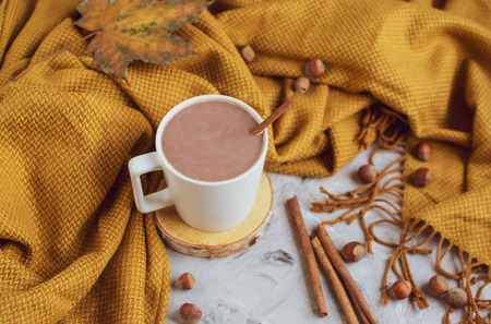 White Cup of Hot Chocolate, Yellow Plaid, Leaves, Gray Background Standard-Bild