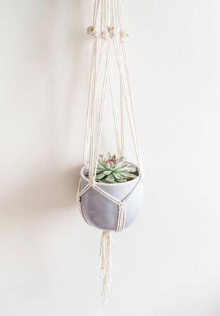 Handmade macrame ornamental flowerpot on white background. Embroidery. Scandinavian design