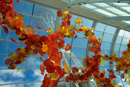 SEATTLE, WASHINGTON, USA - JAN 23rd, 2017: View of the Space Needle from inside the Chihuly Garden and Glass museum conservatory next door. Unique perspective. Reflections. Focus is on the glass sculpture in the foreground.