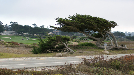 sur: CARMEL, CALIFORNIA, UNITED STATES - OCT 6, 2014: beautiful houses at the Pebble Beach Golf Course, which is part of the famous 17 miles drive area
