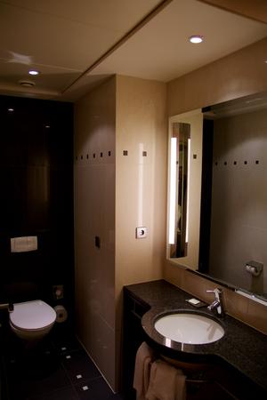 bathroom design: VIENNA, AUSTRIA - APR 28th, 2017: Luxury hotel bathroom interior and upscale furniture with modern style decoration