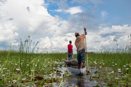 Mokoro Canoe Trip in the Okavango Delta near Maun, Botswana Stock Photo - 77820223