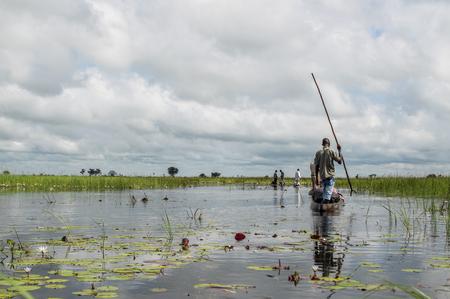 Mokoro Canoe Trip in the Okavango Delta near Maun, Botswana