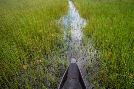 punting: Mokoro Canoe Trip in the Okavango Delta near Maun, Botswana