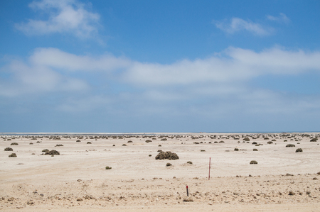 Desert Landscape with Ocean View near Swakopmund, Namibia