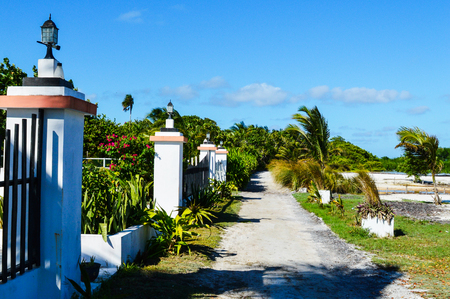 Little Path with Palms and Plants on a Caribbean Island, Caye Caulker, Belize