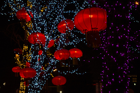 Red Chinese Lanterns Illuminated with Fairy Lights at Night in a Tree, Beijing, China Stock Photo