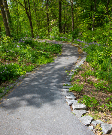 A serpentine (S-shaped) paved walkway, bordered by rock and purple wildflowers, through a wooded park. Imagens