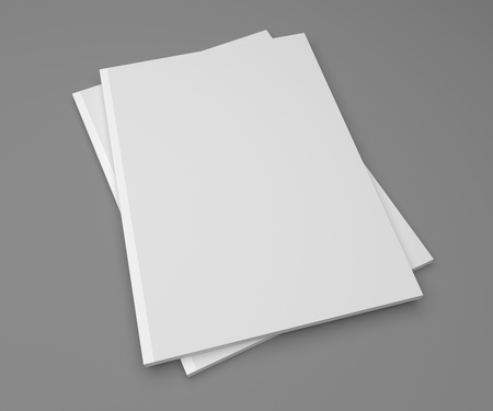 magazine stack: Blank stack of two magazines or books on a gray background with shadows. 3D illustration mockup.