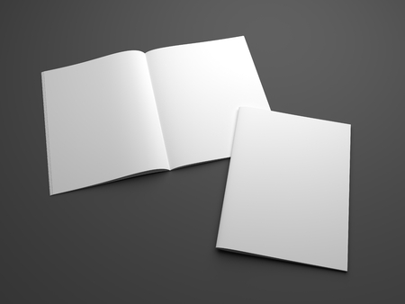 Blank two magazines mock-up with opened and cover. 3D illustration template. Standard-Bild