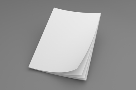 Blank magazine or brochure 3D illustration mockup