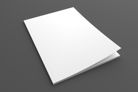 Blank brochure or magazine 3D illustration on grey for your design.
