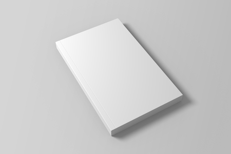 Blank 3D illustration of book mock up.