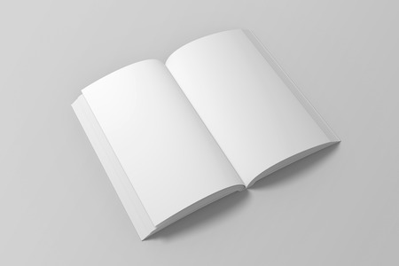 Blank opened 3D illustration of book mock up.