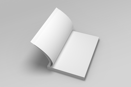 Blank opened 3D illustration of book mock-up. 免版税图像