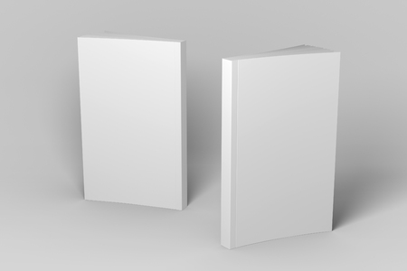 Two standing soft cover 3D illustration mock-up books. 免版税图像