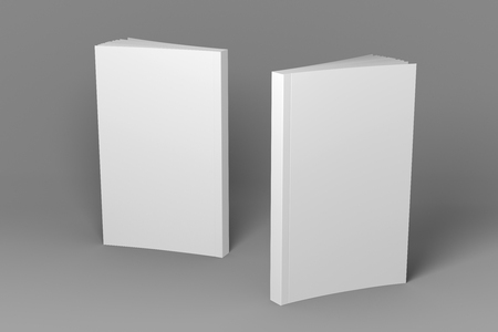 Two standing books. Presentation of front cover, spine and back cover. 3D illustration of mock-up template.