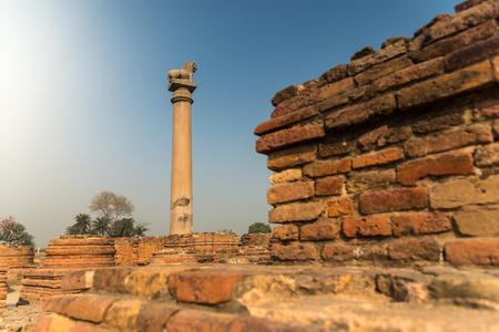 Ashoka pillar, select focus at pillar, the pillar is located at Kutagarasala Vihara, Vaishali, Bihar, India