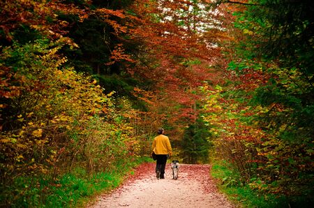 Man in a yellow jacket enjoying an autumn walk in the forest with his dog