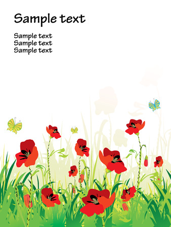 herbage: red poppies on green field with copy space, vector illustration