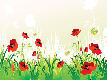 red poppies on green field with copy space, vector illustration Vector