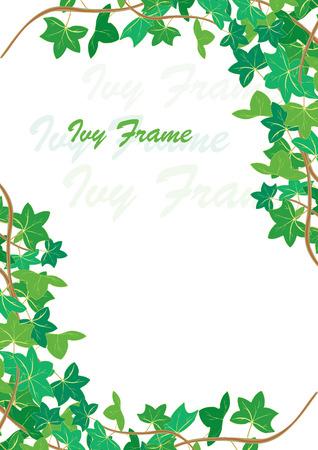 yedra: Ivy en la primavera de ilustraci�n