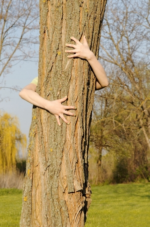 preservation: Arms embracing tree - concept of human care for nature preservation