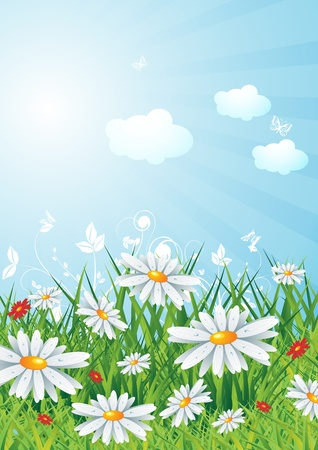 lanscape: Sunny lanscape with flowers, illustration