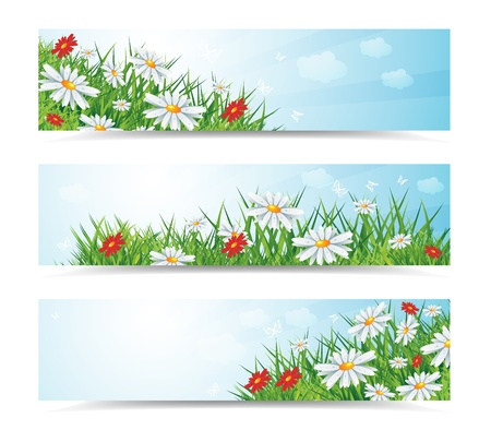 summer natural banners with flowes and blue sky, eps10 vector illustration