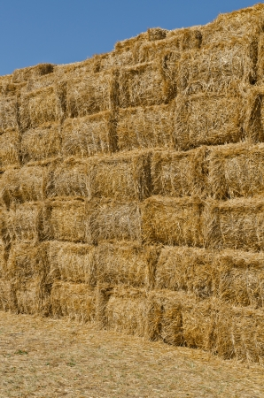 bale: a stack of hay bales, vertical shot