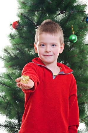 3 5 years: Portrait of young boy handing small gift box standing in front of Christmas tree, looking at camera Stock Photo