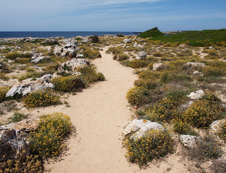 contryside: Hiking trail on the seashore in Menorca