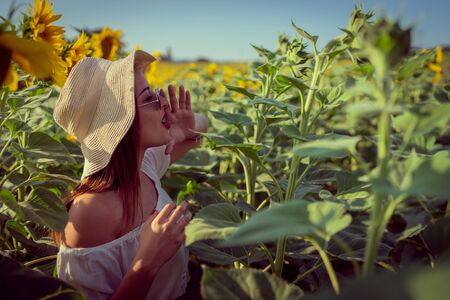 Portrait of young woman in white dress standing in the crops field of sunflowers in a sunny summer day yelling calling shouting