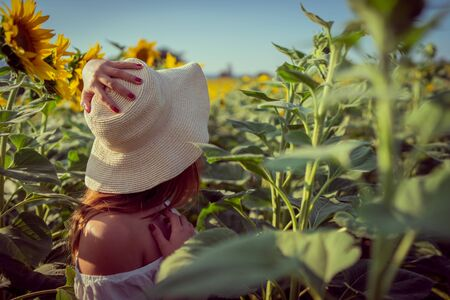 Portrait of young woman in white dress standing in the crops field of sunflowers in a sunny summer day back view