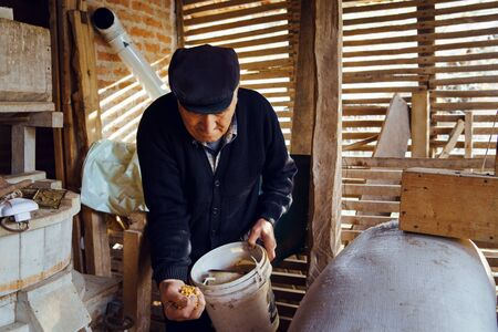 Senior man farmer old pensioner grandfather at the barn holding a bucket with hand full of corn seeds grain food Reklamní fotografie