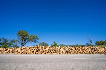 Side view on timber wood ready for winter season - Heating fuel logs stacked by the road on mountain range in summer day