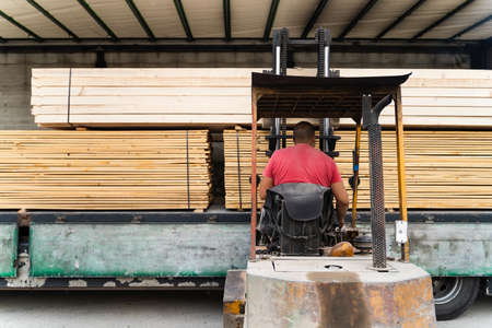 Back view on unknown man on fork lifter loading or unloading timber wood and planks construction material from the truck in day - copy space building industry concept Stock Photo