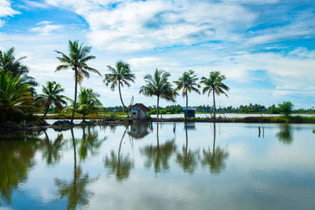 Small hut and coconut tree reflecting In the water under blue sky, Kerala backwaters photography during day time Kadamakkudy Kerala